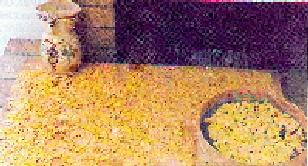 Foto del Triddo: pasta casalinga sostanziosa e delicata