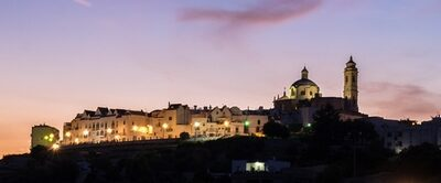 Immagine Panoramica di Locorotondo con vista dalla Valle d'Itria